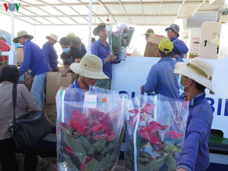 Hành khách và hàng hóa ra đảo Lý Sơn tăng đột biến những ngày cuối năm.